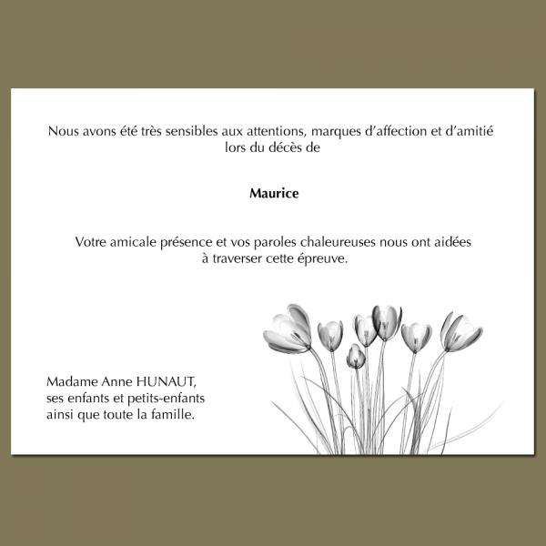 Modèle 16 : Les tulipes de la Bruyère