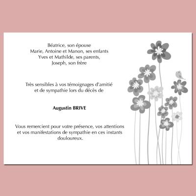 Modèle 17 : Regard de fleurs
