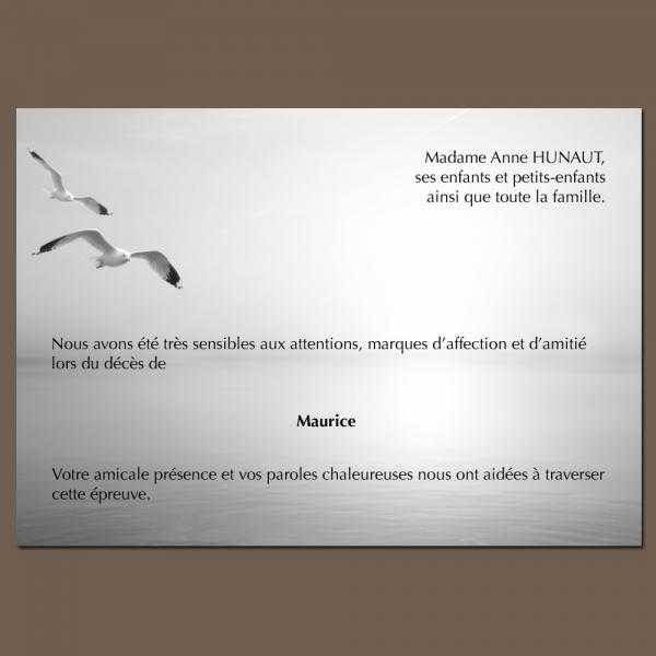 Modèle 27 : Le goéland de Livingstone