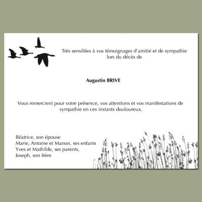 L'oiseau migre sans bruit