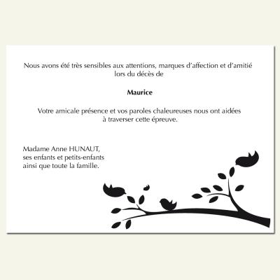 Modèle 33 : Piaillement